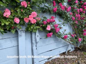 Jacqueline Smyth, Old Railway Wagon, Aughaveigh, Ballybofey